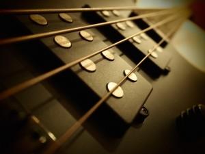 apprendre la basse avec bass and beatbox